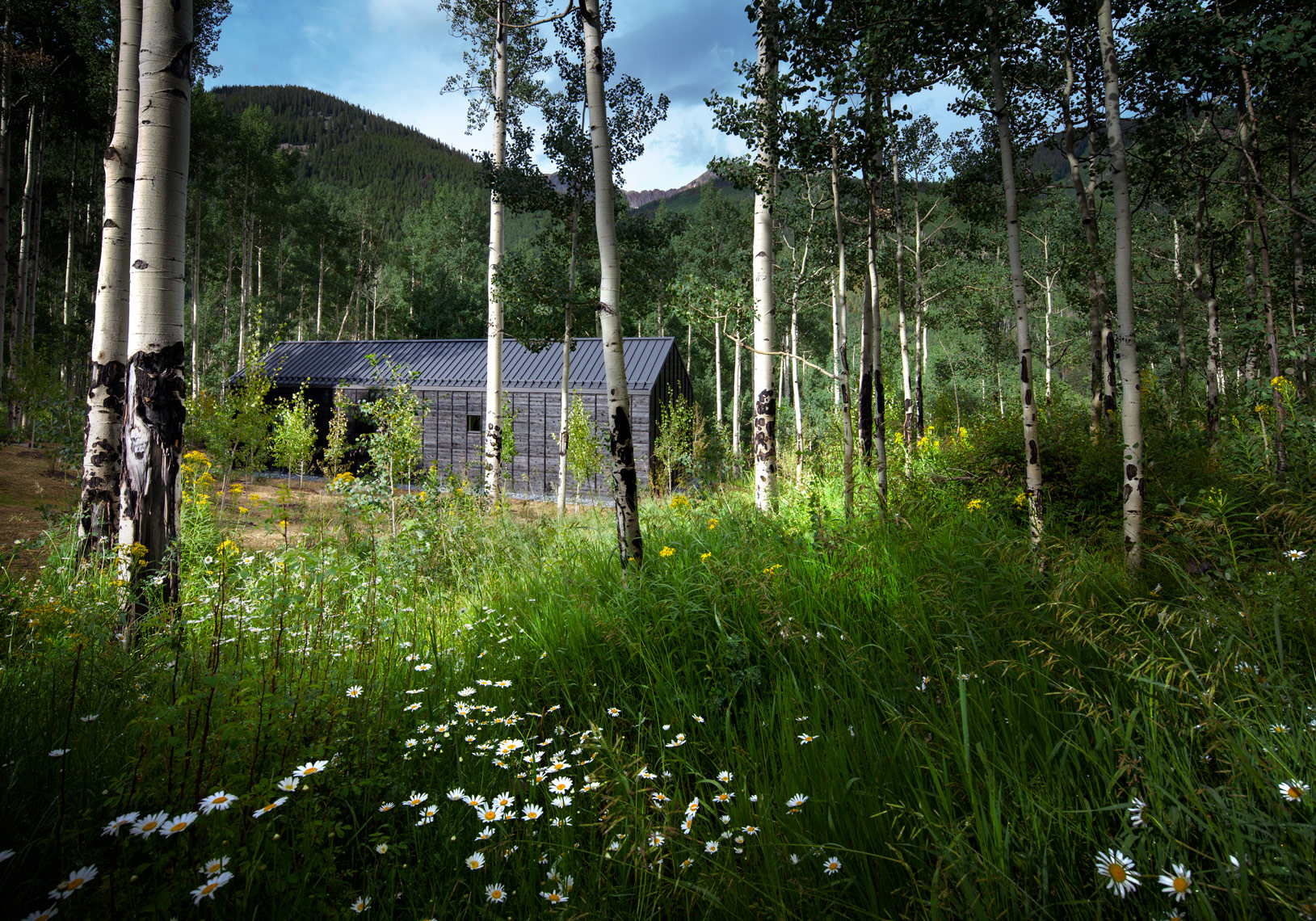 Guest house in Aspen Colorado