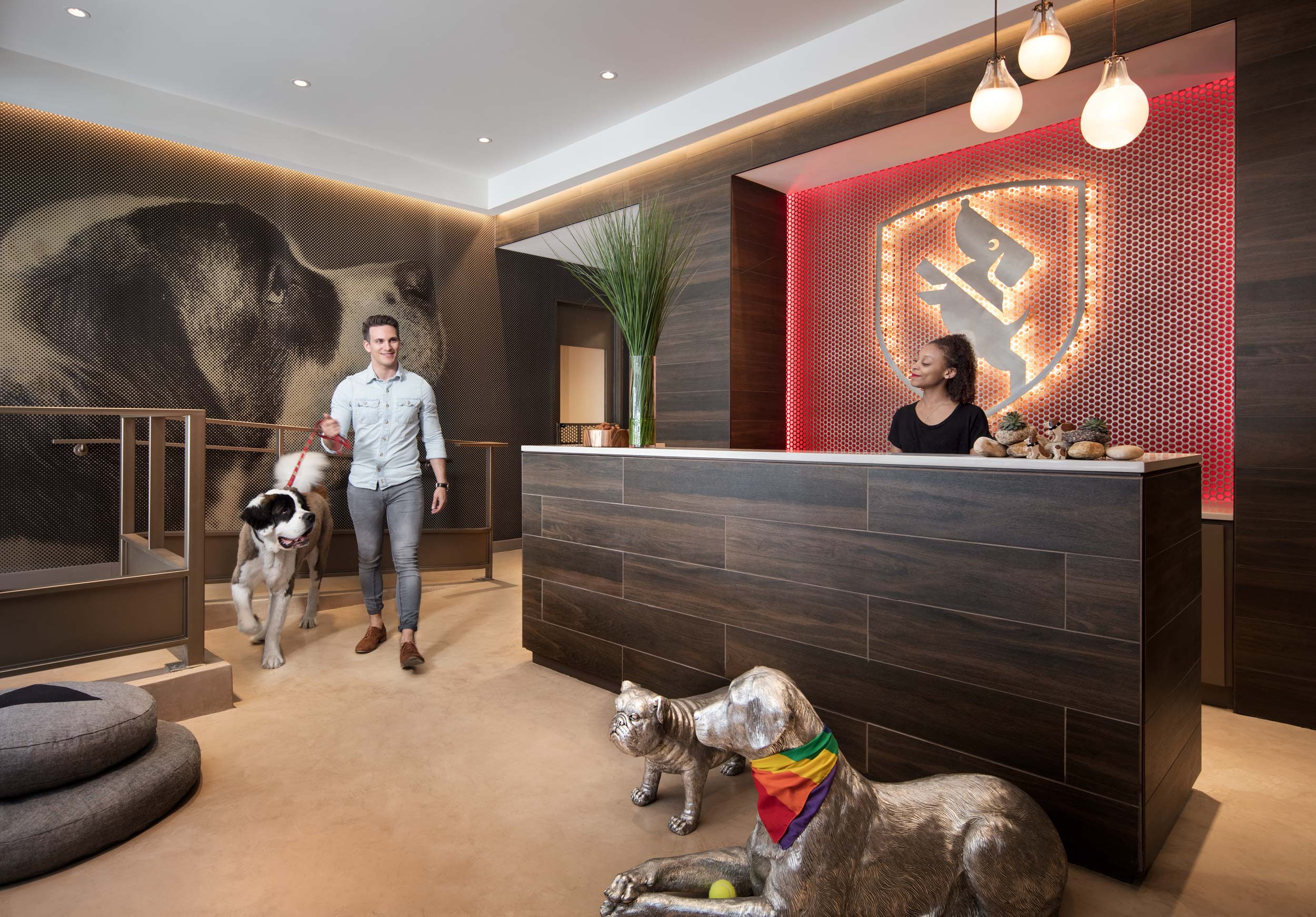Dog City Doggy Daycare at Caladonia in Chelsea by the Related Companies